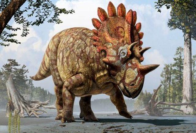 افسانههایی عجیب درباره دایناسورها