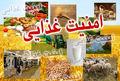 امنیت غذایی از راه بالابردن بهرهوری کشاورزی میسر میشود