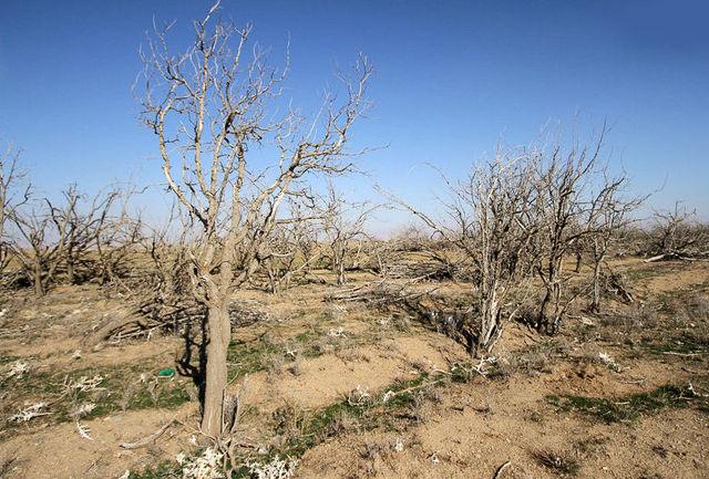 خشکسالی در چهارمحال و بختیاری همچنان ادامه دارد