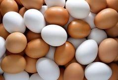هرگز این گونه تخم مرغ ها را نخرید
