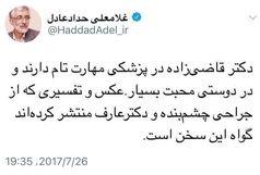 تمجید حداد عادل از مهارت وزیر بهداشت