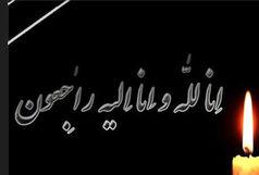 دبیر شورای صنفی نمایش درگذشت