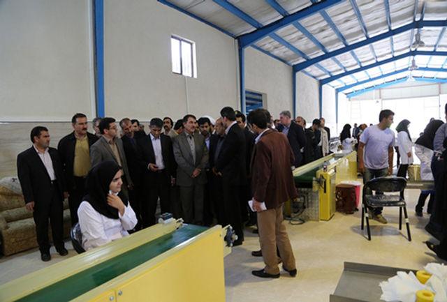 در سال گذشته، تعداد 95 فقره جواز تأسیس با هدف سرمایه گذاری  در استان صادر شده است