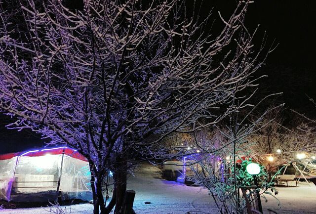 تلاش مدیریت شهرداری ارومیه بعد از بارش برف