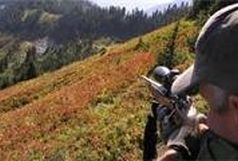 دستگیری شکارچی بی رحم بعد از هفت سال