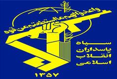 کشت ماریجوانا در شهرستان شیراز امحاء شد
