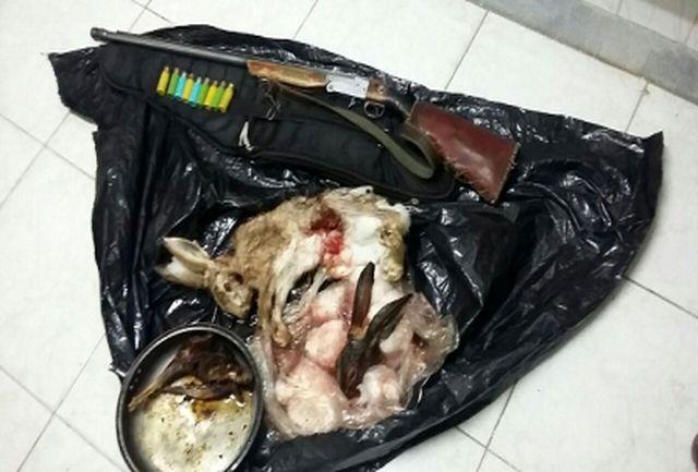 دستگیری 7شکارچی متخلف در زیستگاه های حیات وحش قزوین