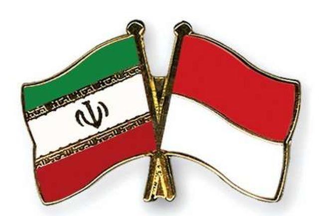 برگزاری سومین دور گفتگو برای همکاریهای حقوق بشری جمهوری اسلامی ایران و اندونزی