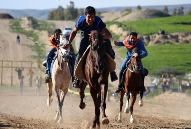 رئیس کمیته پرش با اسب هیات سوارکاری لرستان منصوب شد