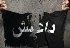 اسارت تروریستهای داعش توسط لشکر فاطمیون