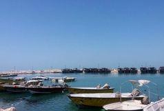 استان بوشهر پیشتاز در جوانگرایی