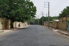 توسعه روستاها با تعامل بنیاد مسکن و سایر دستگاههای اجرای خدمات رسان تحقق می یابد
