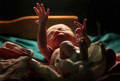 347 نوزاد در مراکز درمانی قم متولد شدند
