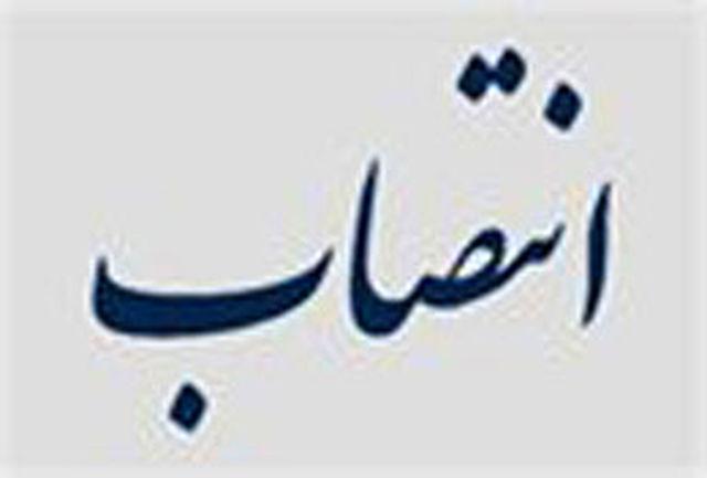 سرپرست جدید نهاد نمایندگی مقام معظم رهبری در دانشگاه شیراز منصوب شد