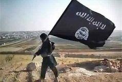 بیماری پوستی که به جان داعشی ها افتاد!