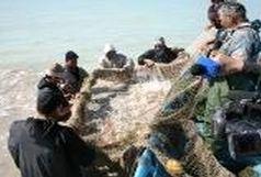 جمع آوری هزار متر تور غیر مجاز صید ماهی