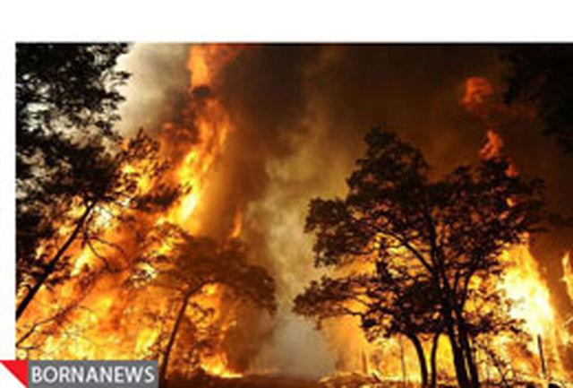 گزارش تصویری: فرار مردم آمریکا از آتش تگزاس