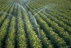 123 هزار هکتار از کل اراضی همدان زیر پوشش آبیاری تحت فشار قرار گرفته اند