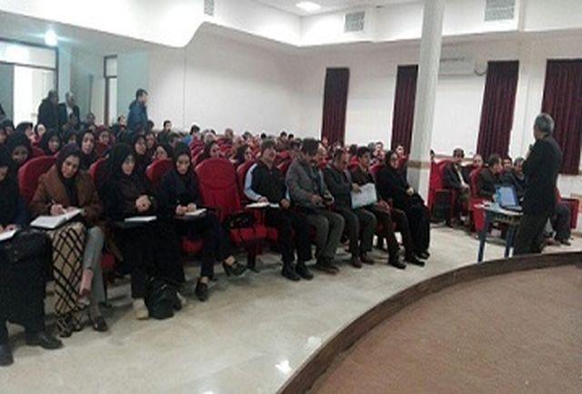 شرکت بیش از هزار و100 آموزگار پایه ششم استان در کارگاه تقسیم کار ملی