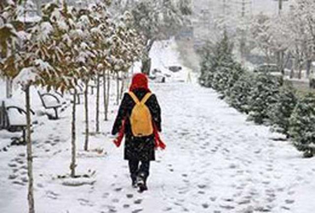 بارش برف مدارس قم را به تعطیلی کشاند