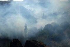 250 هکتار از باغ های چهارمحال و بختیاری هنوز در محاصره آتش