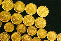 سکه تصویر امام هشت هزار تومان گران شد