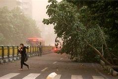 باد شدید به تهران و 12 استان دیگر رسید