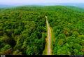 دومین همایش ملی مدیریت جنگلهای شمال در ساری برگزار میشود