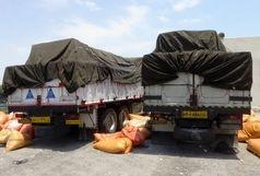 کشف محموله سیر قاچاق در شهرستان بندرلنگه