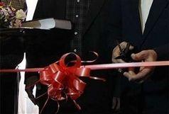 وزیر جهاد کشاورزی برای افتتاح مرحله دوم کارخانه لولهGRP وارد زابل شد