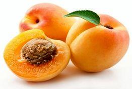 میوه ای مفید برای تسکین درد مفاصل و رماتیسم