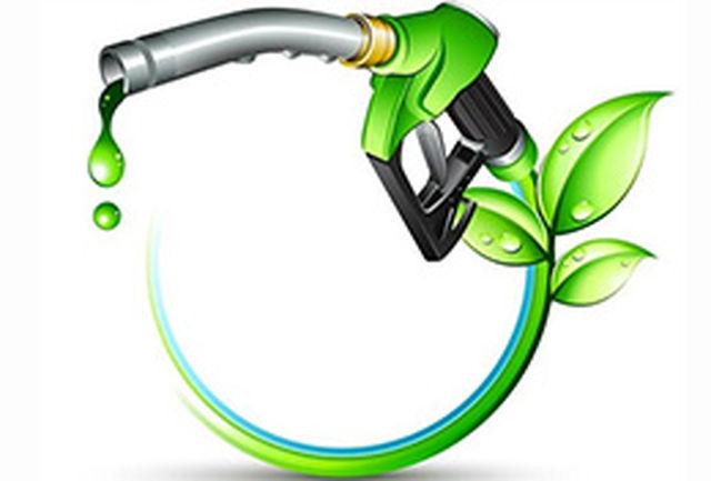 سوخت سبز هم میتواند کشنده باشد