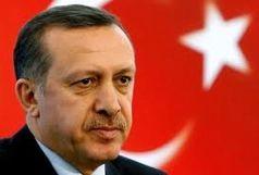 اقدام جالب خانم سفیر در دیدار با اردوغان/ ببینید