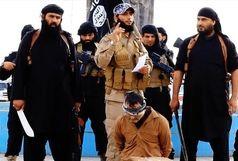 بیانیه وزارت امور خارجه در خصوص پایان داعش