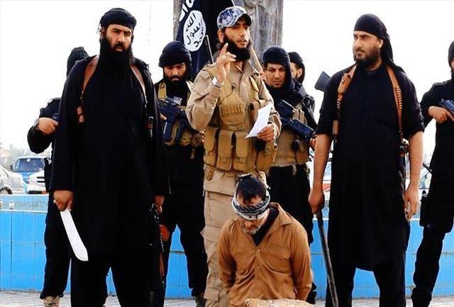 داعش 40 عضو خود را اعدام کرد
