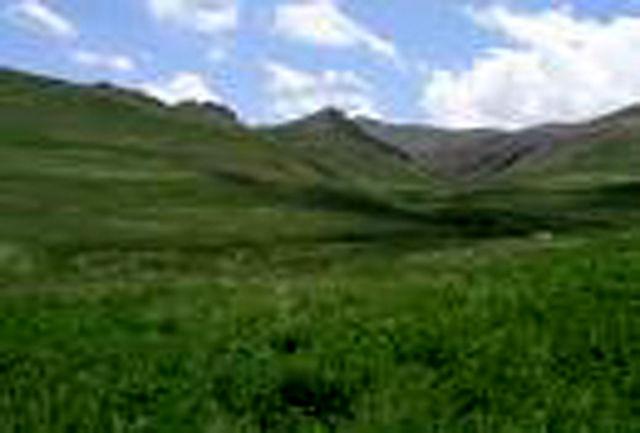 وضعیت کشت علوفه در استان مازندران