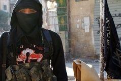 عجیب ترین محتواهای لپ تاپ یک زن داعشی !