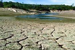 تالابهای خشک شده در کشور به کانونهای گرد و غبار تبدیل شده اند