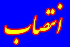 گودرزی سرپرست انجمن مشاوره ورزشی شد