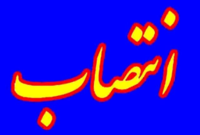 مدیرکل تعزیرات حکومتی استان هرمزگان منصوب شد