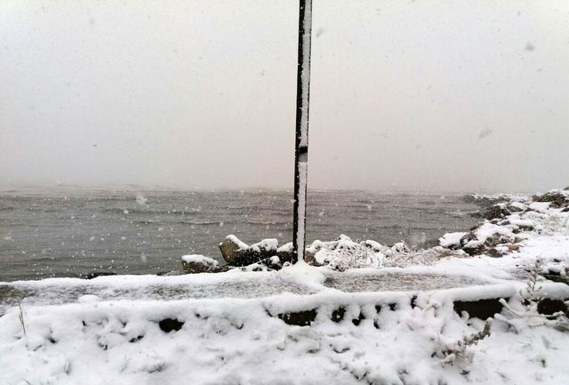 بارش برف پائیزی ساحل محمودآباد را سفید پوش کرد