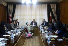 برگزاری هفته فرهنگی فرش افشار در تالار پارک هنرمندان تهران