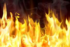 خبرنگار قلم در آتش سوخت