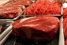 مصرف گوشت شتر نیازمند تبلیغ و فرهنگ سازی است