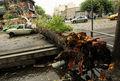جزئیات تلفات طوفان 90 کیلومتری تهران