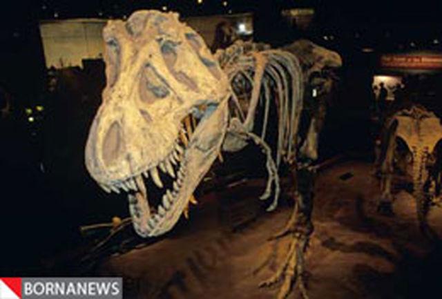 پرده برداری از راز زندگی دایناسورها