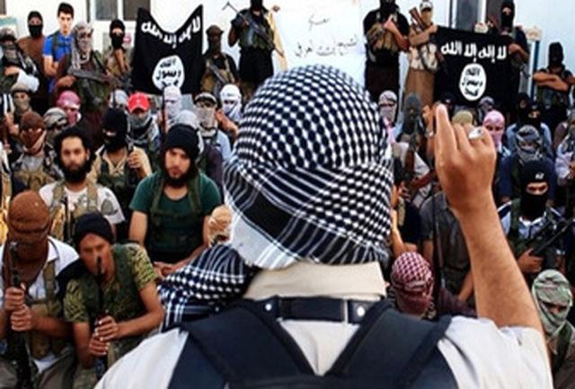 اقدام عجیب داعش در حق همجنسبازان