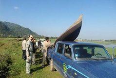 جمع آوری دام های هوایی و تخریب کومه های غیر مجاز در کومله