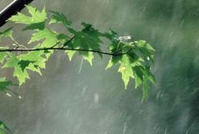بارش برف و باران در بیشتر نقاط کشور تا اواخر هفته