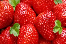برای جلوگیری از آلزایمر این میوه را بخورید!